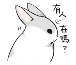 Machiko rabbit sticker #1556296