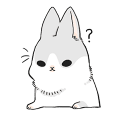 Machiko rabbit sticker #1556307
