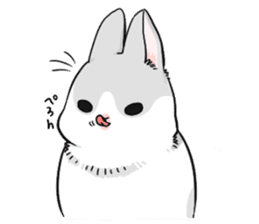 Machiko rabbit sticker #1556327