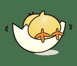 hiyokotch sticker #1556592