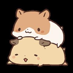 mochi hamuchan