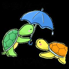 Pleasant Turtles