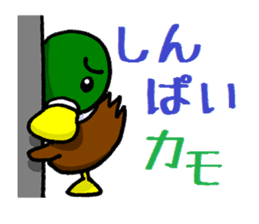 Wild duck sticker #1587327