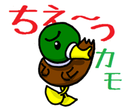 Wild duck sticker #1587334