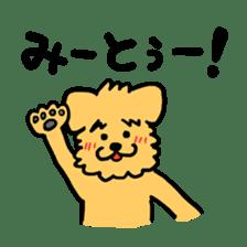 Paochu Dog 2 sticker #1595354