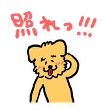 Paochu Dog 2 sticker #1595367