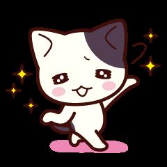 Tabby cat / Nyanko petite