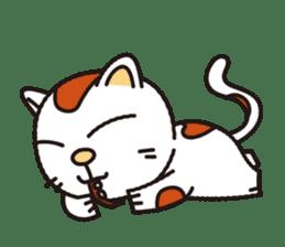 My cat! sticker #1599367