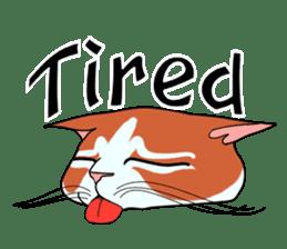 Matatabby of the cat (English  version) sticker #1600840