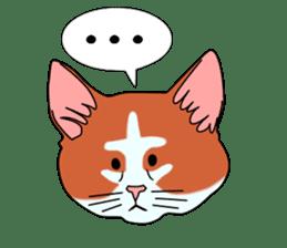 Matatabby of the cat (English  version) sticker #1600870
