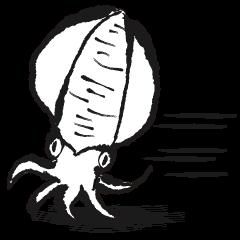Fun squid