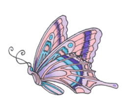 Flower and butterfly sticker #1652152