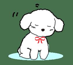 Love Poodle sticker #1686099