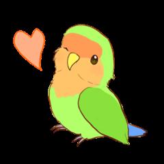 true parrots