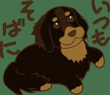 Positive Dogs sticker #1717964