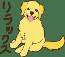 Positive Dogs sticker #1717983