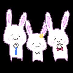 Adorable Rabbit Family