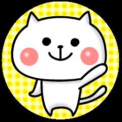 White cat life