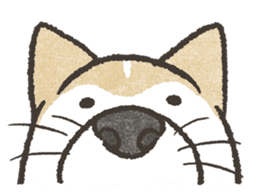 Shiba Inu (Shiba-Dog) stickers - vol.2 sticker #1738377