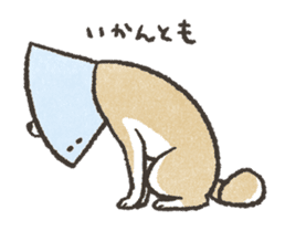 Shiba Inu (Shiba-Dog) stickers - vol.2 sticker #1738379
