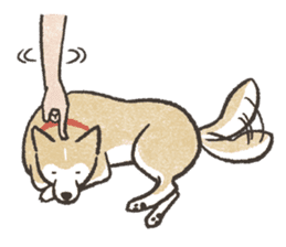 Shiba Inu (Shiba-Dog) stickers - vol.2 sticker #1738380