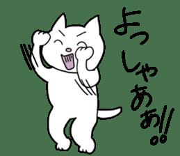 Life of pretty white cat sticker #1744921