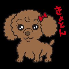 Fluffy Popo