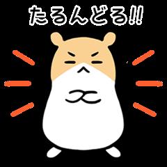 Hamster talkative