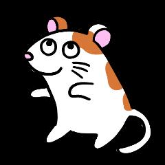 Gajaj Musoj (pleasant rats)