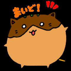 takoyakinyanko