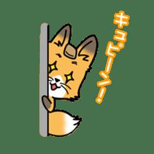 Fox & Raccoon dog! sticker #1847252
