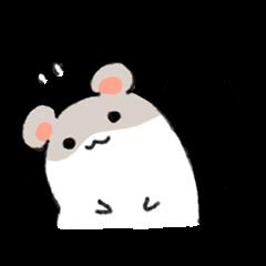 hamster good at consideration