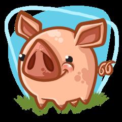 A Piggys Life