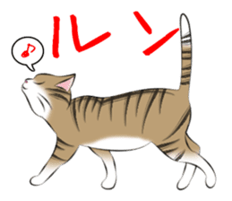 Gesture of a cat sticker #1895027