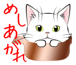 Gesture of a cat sticker #1895032