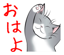 Gesture of a cat sticker #1895039