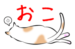 Gesture of a cat sticker #1895043
