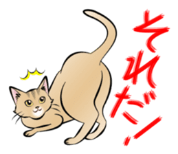 Gesture of a cat sticker #1895053