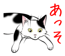 Gesture of a cat sticker #1895055