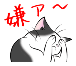 Gesture of a cat sticker #1895060