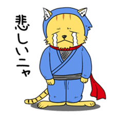 Nekomaru ninja cat sticker #1923097