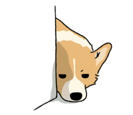 Pembroke Welsh Corgi sticker #1925821