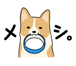 Pembroke Welsh Corgi sticker #1925835