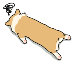 Pembroke Welsh Corgi sticker #1925840