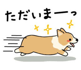 Pembroke Welsh Corgi sticker #1925847