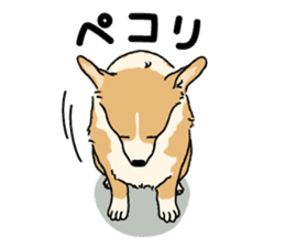 Pembroke Welsh Corgi sticker #1925849