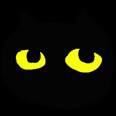 A cute Black Cat