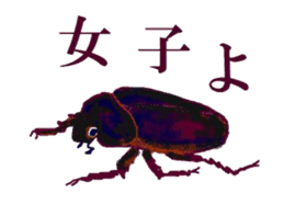 Sticker of insects sticker #1944800