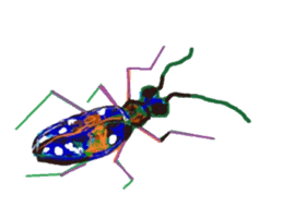 Sticker of insects sticker #1944807