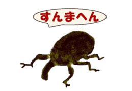 Sticker of insects sticker #1944810